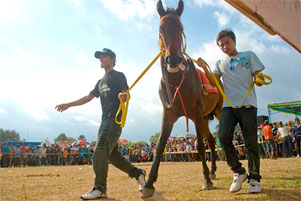 Thumbnail untuk artikel blog berjudul Pacuan Kuda ala Desa Kebondalem Kidul