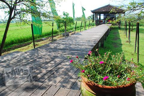Spot fotografi cantik indah untuk selfie di rumah makan Bale Padi Sukoharjo, Jawa Tengah