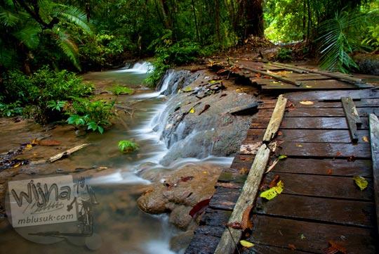 Foto jembatan kayu eksotik dekat Air Terjun Moramo, Konawe Selatan, Sulawesi Tenggara di tahun 2011