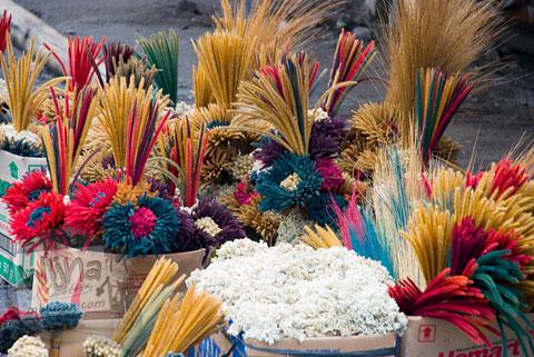 Foto bunga gunung yang dijual di kawasan wisata Kaliadem, Yogayakarta di tahun 2006