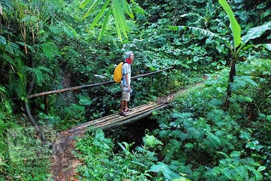 jalan setapak di dalam hutan yang menuju ke gua mawar maria, lokasi ziarah umat kristiani yang terletak di Musuk, Boyolali, Jawa Tengah