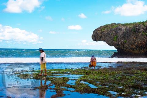 Kegiatan warga desa turun ke bibir Pantai Siung mencari kerang di tahun 2008