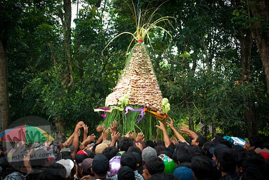warga berebut gunungan apem berkah saat prosesi upacara saparan ki ageng wonolelo di ngemplak, sleman