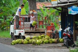 Thumbnail untuk artikel blog berjudul Lempar Melon Elpiji