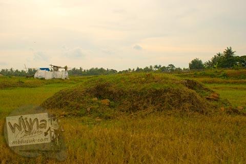 Gundukan purbakala di situs Batujaya, Karawang, Jawa Barat pada tahun 2009
