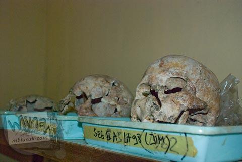 Foto temuan Tengkorak manusia di situs Batujaya, Karawang, Jawa Barat pada tahun 2009