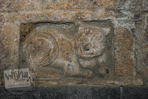 Relief kucing di dalam bilik Candi Pawon di Magelang tahun 2009