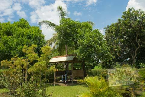 Foto Taman di Situs Payak, Srimulyo, Piyungan, Bantul pada Februari 2009