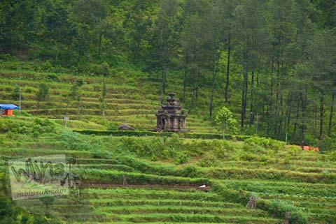 Foto ladang warga dari Candi Gedong Songo, Ambarawa Semarang, Jawa Tengah di tahun 2009