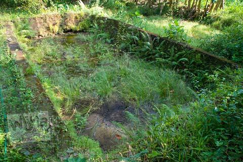 Foto kolam purbakala di Candi Gembirowati, Purwosari, Gunungkidul tahun 2009