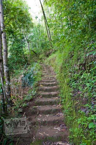 Foto jalan setapak menanjak menuju Candi Gunung Wukir, Magelang, pada tahun 2008