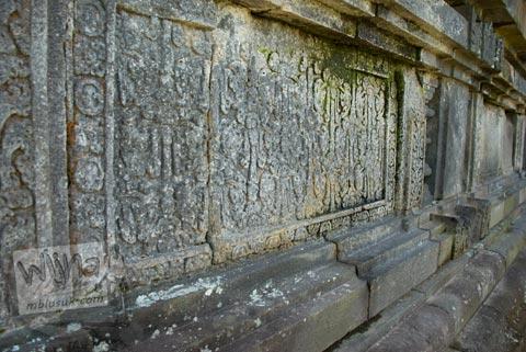 Relief Tanaman di Candi Asu Sengi di kecamatan Dukun, Magelang, Jawa Tengah pada April 2009