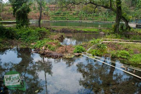 Telaga yang ada di dekat Candi Sumberawan di Toyomarto, Singosari, Malang, Jawa Timur