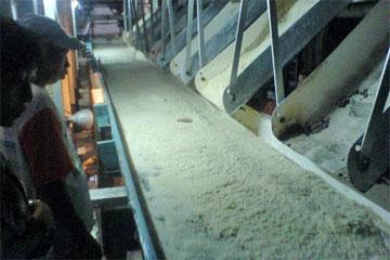 Gula pasir hasil Produksi Pabrik Gula Gondang baru, Klaten yang siap dikemas dan dikonsumsi