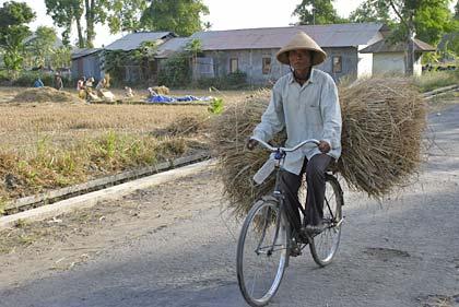Sepeda di pedesaan