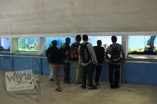 wisatawan melihat ikan di akuarium air tawar kebun binatang gembiraloka pada zaman dulu di yogyakarta tahun 2006