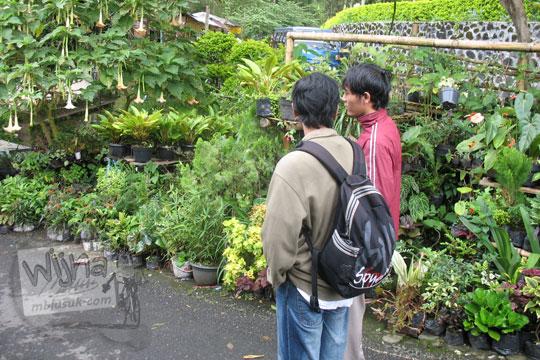 raditya panji umbara dan joko alfandy alhuda di sekeliling penjual tanaman hias tawangmangu