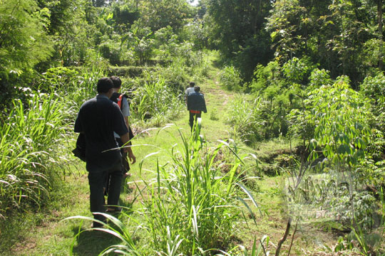 jalan kaki masuk hutan di perbukitan prambanan