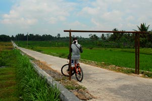 Thumbnail artikel blog berjudul Mblusuk Itu Ngalang
