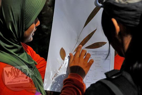 penjelasan survei vegetasi daun pada kegiatan NAMES yang diselenggarakan oleh MATALABIOGAMA UGM di Gua Kiskendo