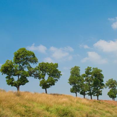 Foto pemandangan di tol Cikampek pada tahun 2009