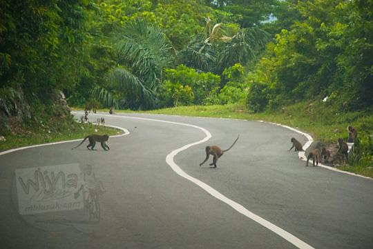 Medan perjalanan ke Air Terjun Suhom (Seuhom) di Krueng Kala, Lhoong, Aceh Besar
