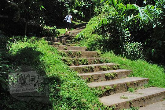 jumlah anak tangga menuju air terjun Tegenungan, Bali