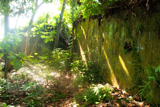 foto reruntuhan tembok pesanggrahan gedong pusaka peninggalan sultan hamengkubuwono ii di yogyakarta pada zaman dulu maret 2012
