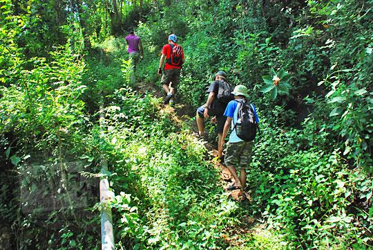 Melibas hutan belantara menuju ke air terjun curug seribu batu (cengkehan) di dusun Giriloyo, Wukirsari, Imogiri, Bantul, DI Yogyakarta