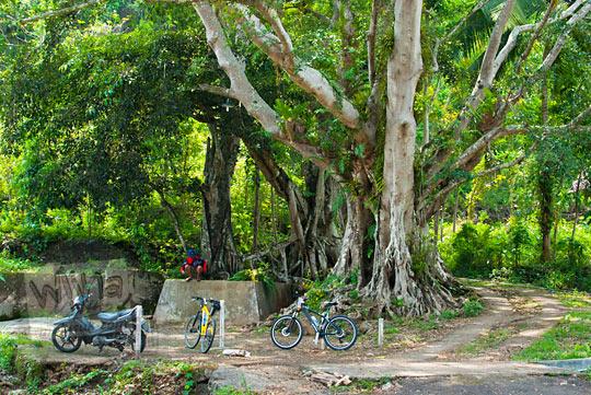 Mata air atau sendang mistis dan angker yang tidak bernama yang terletak di cabang jalan dekat pertigaan jalan raya menuju Sekolan Polisi Negara (SPN) di Imogiri, bantul, Yogyakarta pada kunjungan zaman dulu November 2014