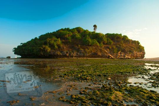 pulau pantai drini di desa tanjungsari gunungkidul yogyakarta pada zaman dulu agustus 2012