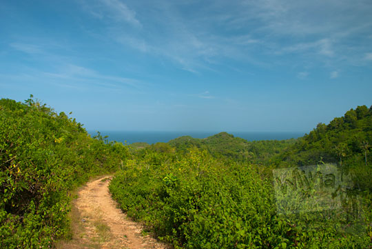 pemandangan pantai ngunggah dari puncak bukit gunungkidul pada zaman dulu Juni 2014