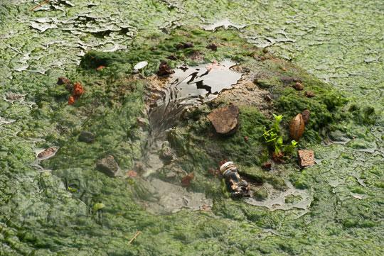 foto mata air kotor pesanggrahan warungboto peninggalan sultan hamengkubuwono ii di yogyakarta pada zaman dulu maret 2012