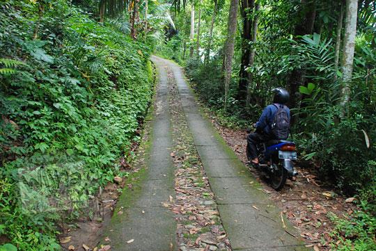 Jalan desa menuju objek wisata Kedung Gulo di Desa Kalitapas, Kecamatan Bener, Kabupaten Purworejo, Jawa Tengah