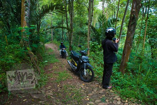 suasana masuk jalan hutan menuju ke Curug Klanceng Putih, Sedayu, Purworejo