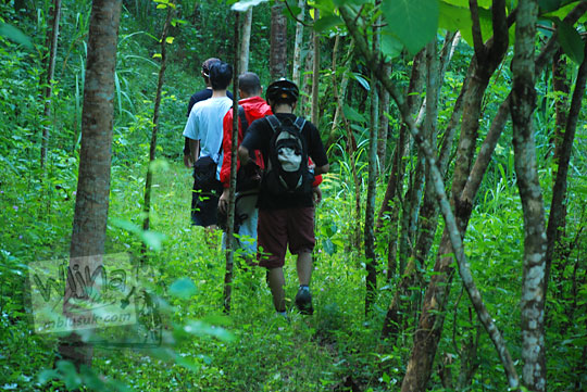 berjalan kaki di dalam lebatnya hutan menuju ke curug kembar Prambanan di desa wisata Wukirharjo, Sleman