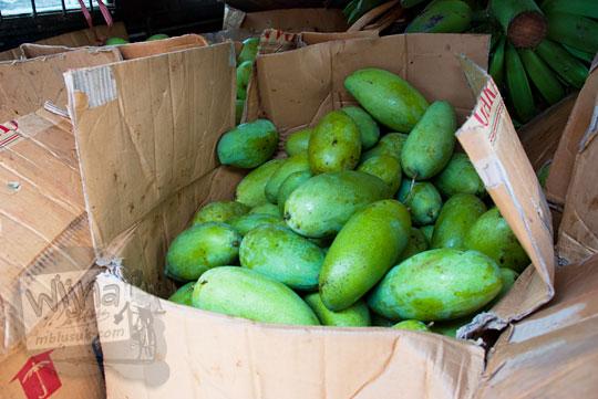 mangga murah dan besar khas malino yang dijual di pasar sentral malino