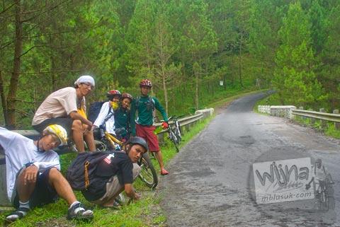 Foto hutan pinus di Air Terjun Kedung Kayang, Magelang, Jawa Tengah