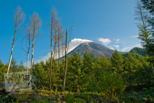 Keindahan Gunung Merapi dari Kaliadem, Yogyakarta di tahun 2009
