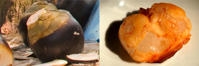 siwalan buah depok bantul parangtritis kolang-kaling kuliner pantai