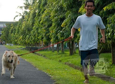Foto Lari sore bersama anjing peliharaan di Lapangan Niti Mandala kota Denpasar pada Februari 2009