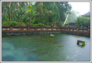 Foto mata air utama di Tirta Empul Bali pada Februari 2009