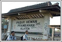 Prostitusi Wanita Pasar Sapi Prambanan Jawa Tengah