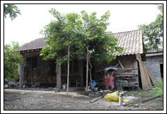 Cerita Rumah berhantu di lokasi KKN UGM di Prambanan, Klaten